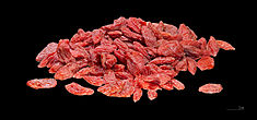 can rabbits eat goji berries